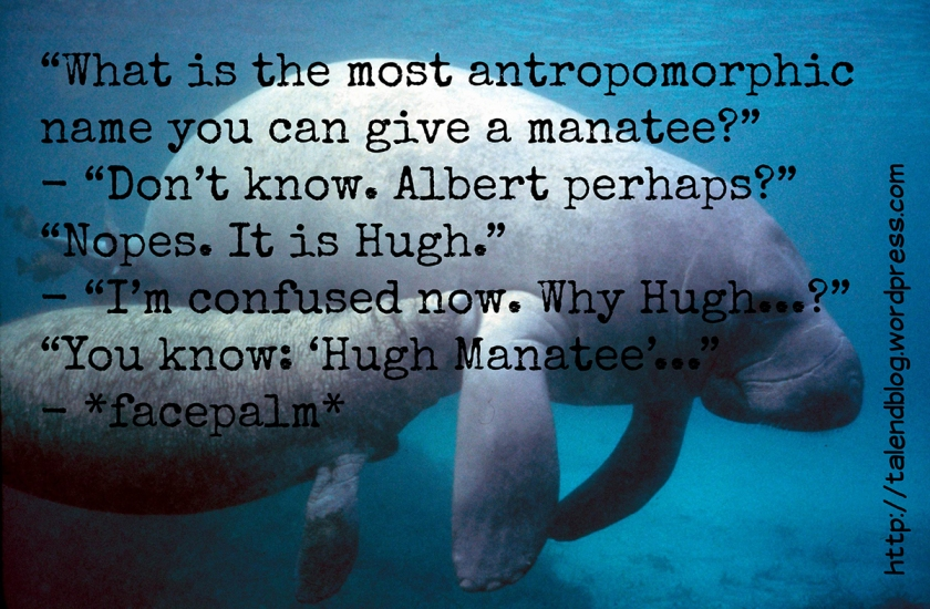 What is the most antropomorphic name you can give a manatee?
